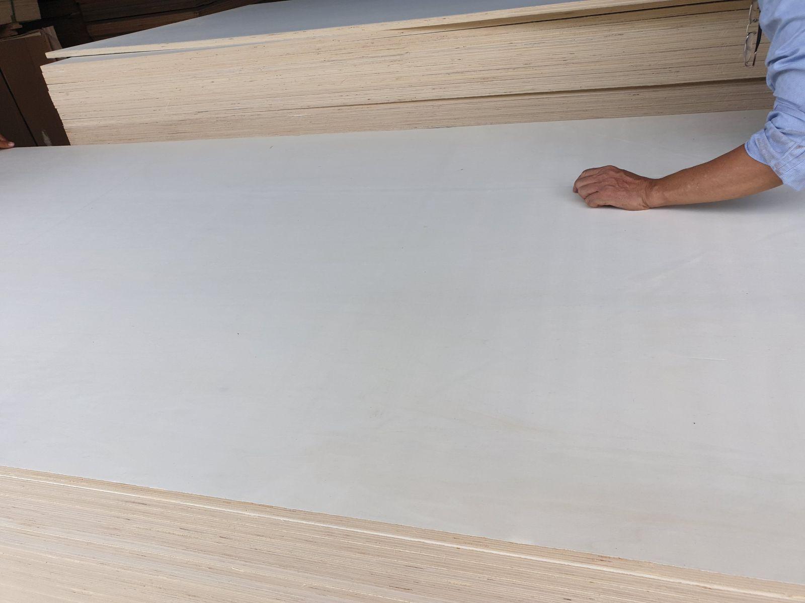 Vietnam poplar Plywood